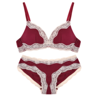 wholesale red beige bra and pantie