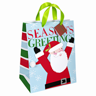 seasons greetings christmas giftbag