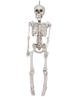 overstock skeleton hanging
